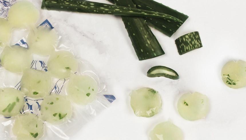 Handige ijsblokjes met aloë vera in een Toppits® ijsblokzakje om zonnebrand te verzachten.